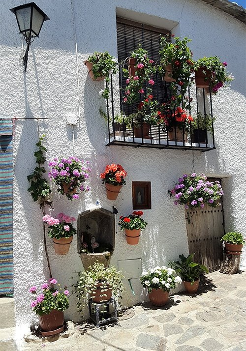 Typical street in Bubión with flowers